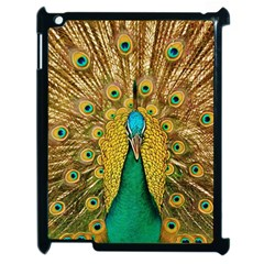 Bird Peacock Feathers Apple Ipad 2 Case (black)