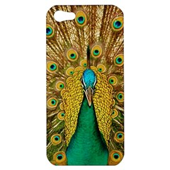 Bird Peacock Feathers Apple Iphone 5 Hardshell Case by AnjaniArt