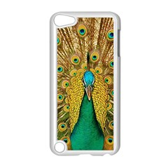 Bird Peacock Feathers Apple Ipod Touch 5 Case (white)
