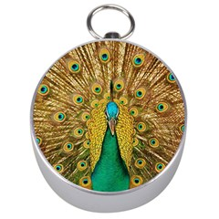 Bird Peacock Feathers Silver Compasses by AnjaniArt
