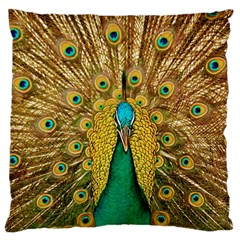 Bird Peacock Feathers Large Flano Cushion Case (two Sides) by AnjaniArt