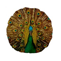 Bird Peacock Feathers Standard 15  Premium Flano Round Cushions by AnjaniArt