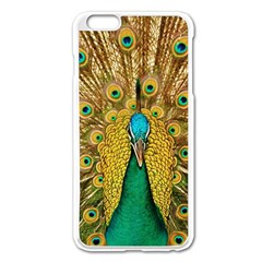 Bird Peacock Feathers Apple Iphone 6 Plus/6s Plus Enamel White Case by AnjaniArt