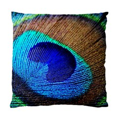 Blue Peacock Standard Cushion Case (two Sides) by AnjaniArt