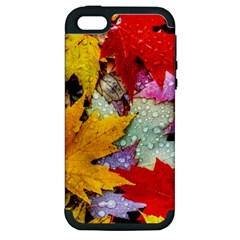 Coloorfull Leave Apple Iphone 5 Hardshell Case (pc+silicone) by AnjaniArt