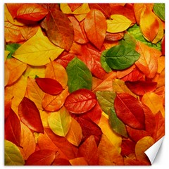 Colorful Fall Leaves Canvas 20  X 20   by AnjaniArt