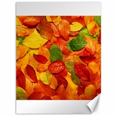 Colorful Fall Leaves Canvas 36  X 48   by AnjaniArt