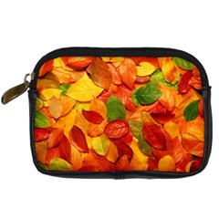 Colorful Fall Leaves Digital Camera Cases by AnjaniArt