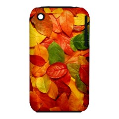 Colorful Fall Leaves Apple Iphone 3g/3gs Hardshell Case (pc+silicone) by AnjaniArt