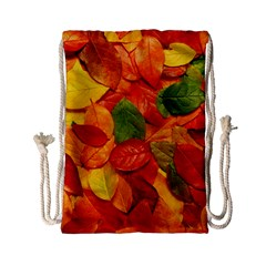 Colorful Fall Leaves Drawstring Bag (small) by AnjaniArt