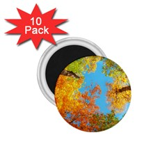 Colorful Leaves Sky 1 75  Magnets (10 Pack)  by AnjaniArt