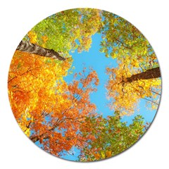 Colorful Leaves Sky Magnet 5  (round) by AnjaniArt