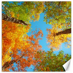 Colorful Leaves Sky Canvas 20  X 20   by AnjaniArt