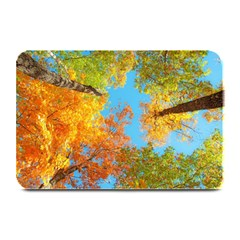 Colorful Leaves Sky Plate Mats by AnjaniArt