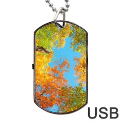 Colorful Leaves Sky Dog Tag Usb Flash (one Side) by AnjaniArt