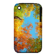 Colorful Leaves Sky Apple Iphone 3g/3gs Hardshell Case (pc+silicone) by AnjaniArt