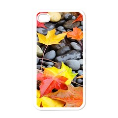 Colorful Leaves Stones Apple Iphone 4 Case (white) by AnjaniArt