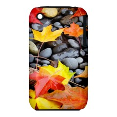 Colorful Leaves Stones Apple Iphone 3g/3gs Hardshell Case (pc+silicone) by AnjaniArt