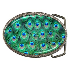 Peacock Feather Belt Buckles by AnjaniArt