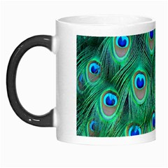 Peacock Feather Morph Mugs