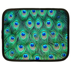Peacock Feather Netbook Case (large) by AnjaniArt