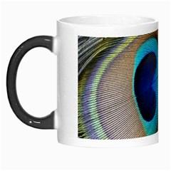 Single Peacock Morph Mugs