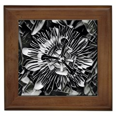 Black And White Passion Flower Passiflora  Framed Tiles by yoursparklingshop