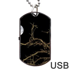 Nature Dark Scene Dog Tag Usb Flash (two Sides)  by dflcprints