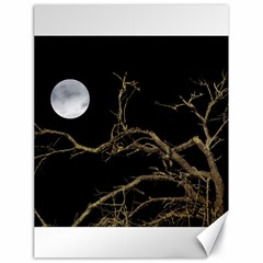 Nature Dark Scene Canvas 18  X 24   by dflcprints
