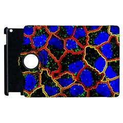 Single Cells Gene Edges Zoomin Color Apple Ipad 2 Flip 360 Case by AnjaniArt