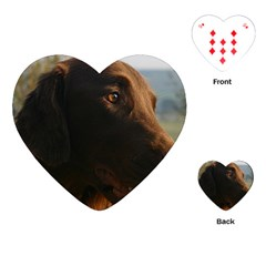 Flat Coated Retriever Close Up Playing Cards (Heart)  by TailWags