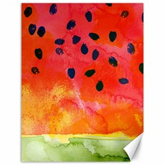 Abstract Watermelon Canvas 12  X 16   by DanaeStudio