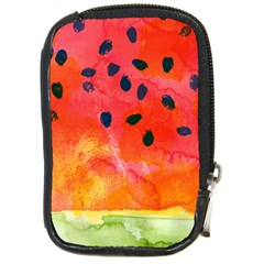 Abstract Watermelon Compact Camera Cases by DanaeStudio