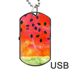 Abstract Watermelon Dog Tag Usb Flash (two Sides)  by DanaeStudio