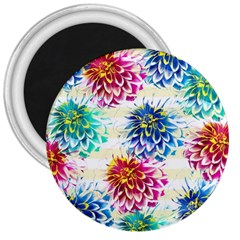 Colorful Dahlias 3  Magnets by DanaeStudio