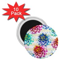 Colorful Dahlias 1.75  Magnets (10 pack)