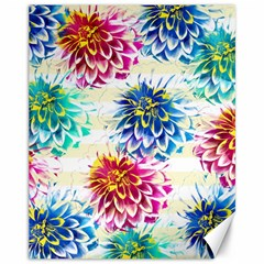 Colorful Dahlias Canvas 11  x 14