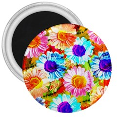 Colorful Daisy Garden 3  Magnets by DanaeStudio