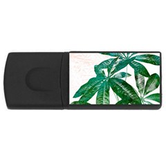 Pachira Leaves  Usb Flash Drive Rectangular (4 Gb)  by DanaeStudio