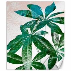 Pachira Leaves  Canvas 8  X 10  by DanaeStudio