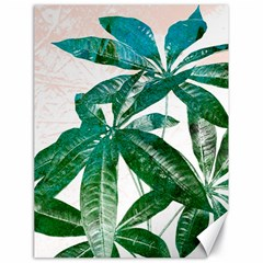 Pachira Leaves  Canvas 18  X 24   by DanaeStudio