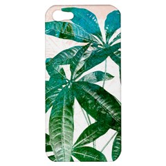 Pachira Leaves  Apple Iphone 5 Hardshell Case