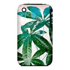 Pachira Leaves  Iphone 3s/3gs by DanaeStudio