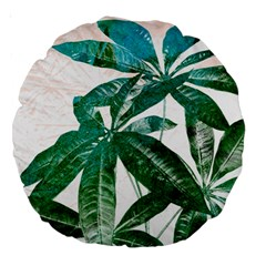 Pachira Leaves  Large 18  Premium Round Cushions