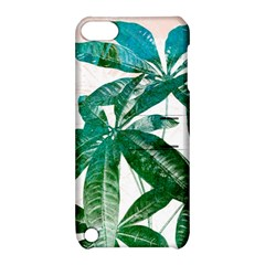 Pachira Leaves  Apple Ipod Touch 5 Hardshell Case With Stand