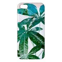 Pachira Leaves  Iphone 5s/ Se Premium Hardshell Case