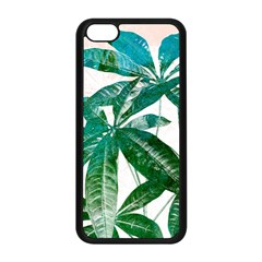Pachira Leaves  Apple Iphone 5c Seamless Case (black)