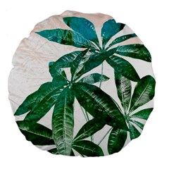 Pachira Leaves  Large 18  Premium Flano Round Cushions
