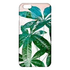 Pachira Leaves  Iphone 6 Plus/6s Plus Tpu Case