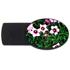 Pink Flowers Over A Green Grass Usb Flash Drive Oval (2 Gb)